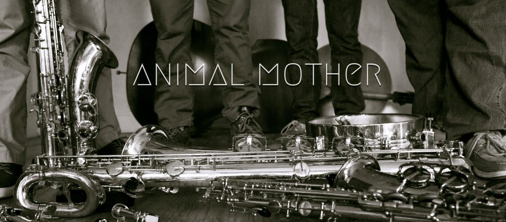 Animal Mom Promo